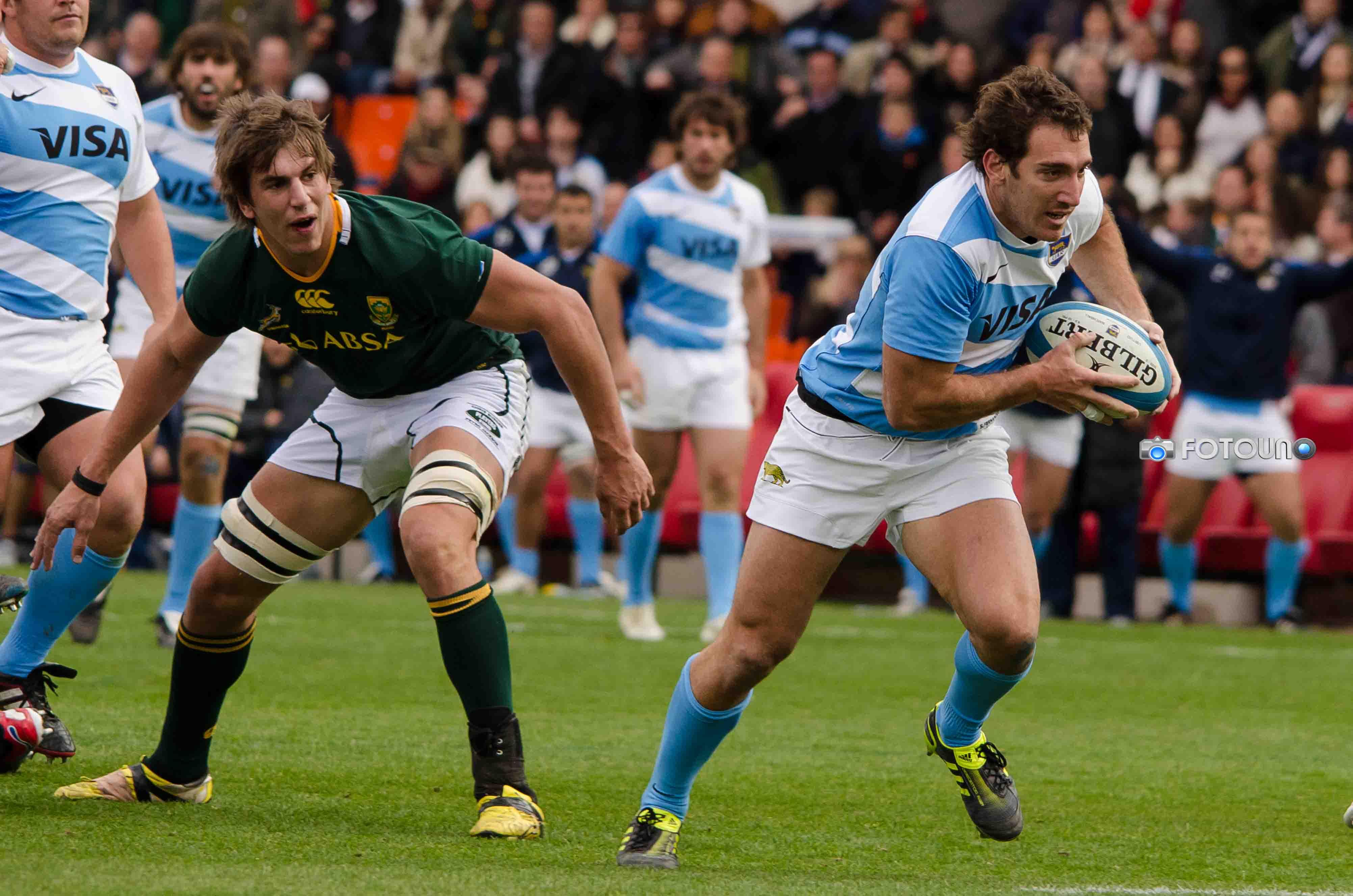 puma rugby